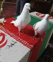..کبوتر با کبوتر...