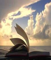 کتاب در باد