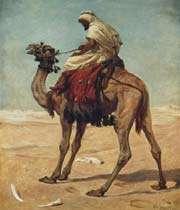 le chamelier alqama et l'orgueil
