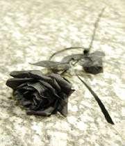 کالا گلاب