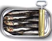 کنسرو ماهی ساردین