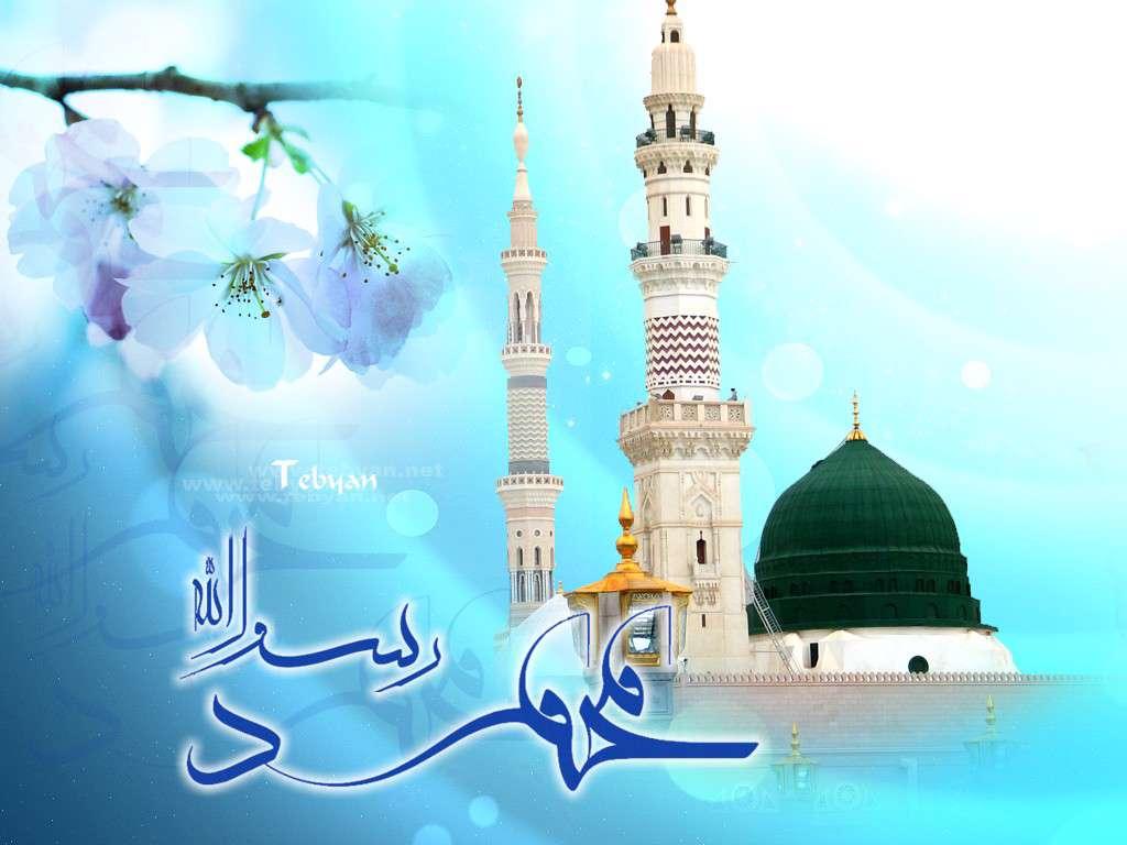 www.shirazpic.com