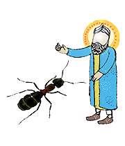 عکس, تصویر, داستان حضرت سلیمان(ع) و مورچه