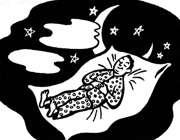 خوابیدن در شب