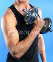 عضلات بدن