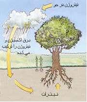 قران و علم روز