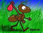 مورچه