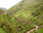 شهر تاریخی و زیبای پاوه