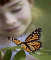 پروانه وپسرک،خدا