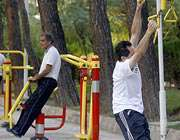 ورزش ، نشاط