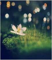 هر دقیقه ای كه چشمانمان را می بندیم، 60 ثانیه نور را از دست می دهیم!