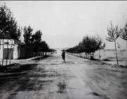 خیابان و لیعصر