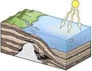 چرا به زغال سنگ و نفت و گاز سوخت های فسیلی می گویند