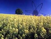 پرتوفرآوری و کشاورزی