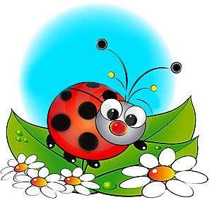 نتیجه تصویری برای کفشدوزک و پروانه کودکانه