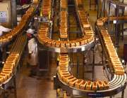 204738021713231121116352032542416215246116 مراحل تولید نان به روش صنعتی