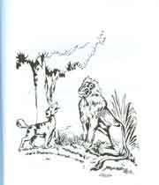 شیر اور کتا