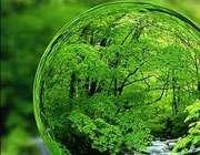 زندگی سبز