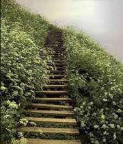 راهی برای عبور از معبر تنگ شهادت