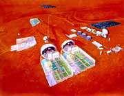 مجموعه های شبیه سازی شده برای اقامت در مریخ