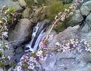 رود- دره های تهران