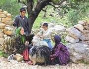 les jeunes de la tribu bakhtiari