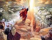 عصای موسی(ع)