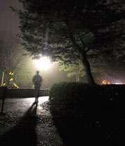ورزش کردن در شب، درختان