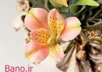 ساخت گل السترومریا