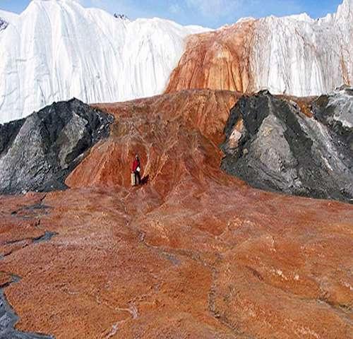 شلالات الــدم في القارة القطبية 89249137111222130772