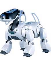 دوست داشتنیترین ربات های جهان