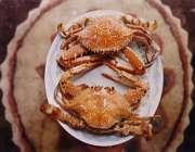 گوشت خرچنگ