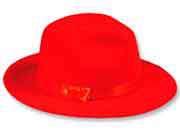 سُرخ ٹوپی