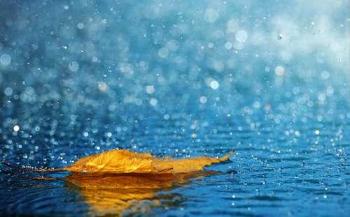ایمان و باران