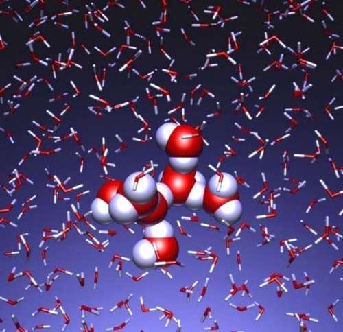 حرکت مولکول های آب