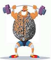 مغز تنومند