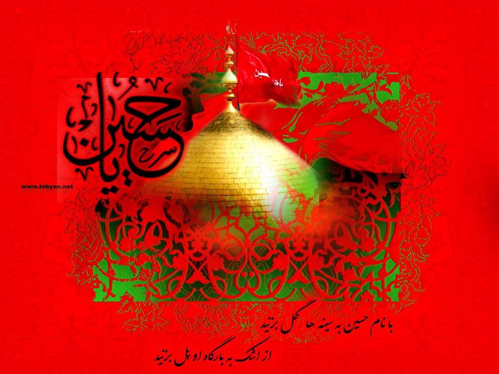www.Iranvij.ir | گروه اینترنتی ايران ويج 