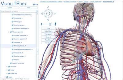 نفوذ گوگل به بدن انسان