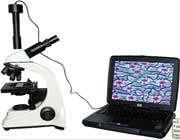 نحوه کار با میکروسکوپ نوری