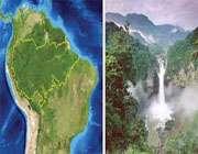 آمازون مهد گونههای مختلف زیستی