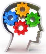 فعالیت مغز