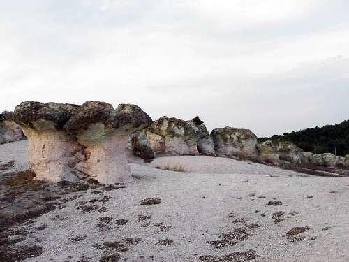 بزرگترین قارچ سنگی دنیا