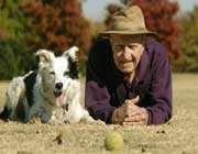 un border collie, pose à côté de john pilley, professeur de psychologie au wofford college en caroline du sud