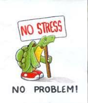 no_stress_no_problem