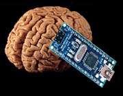 brain_hack