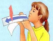 بال هواپیما (ایر فویل)