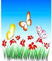 داستان سه پروانه کوچولو