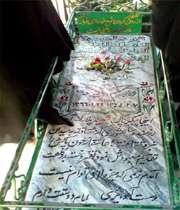 تنها آرزوی شهید پلارک /تصویر