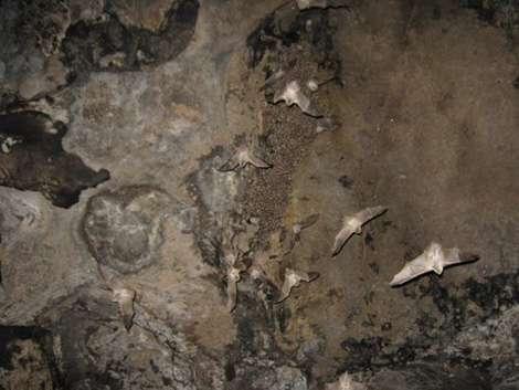 طولانی ترین غار خراسان