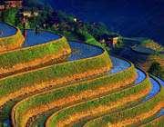 مُدرجات مزارع الأرز في الفلبين
